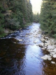 reka-lucie-ticha.jpg